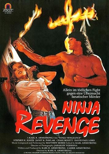 ninjavengeance2